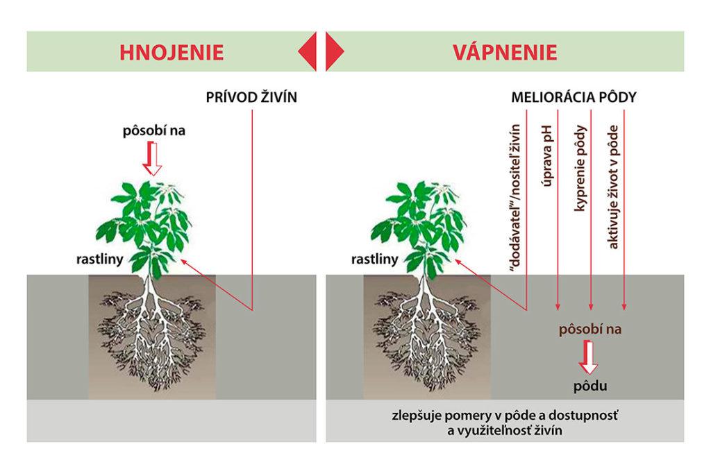 Rovdiely Hnojenie Vapnenie